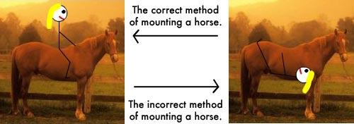 horse_mounting.jpg